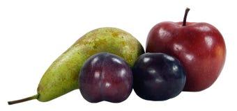 Purpurrote Pflaumen Birne und Äpfel Stockfotografie