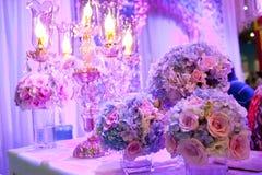 Purpurrote Rose Stockfoto