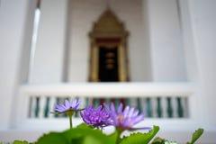 Purpurrote Seeroseblume mit schönem thailändischem traditionellem archite Lizenzfreies Stockfoto