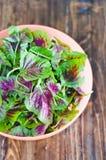 Purpurrote Spinatsblätter in einer Schüssel Neue Mischung des grünen und purpurroten Spinats auf Tabellenabschluß oben Stockbild