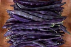 Purpurrote Stangenbohnen auf einem hölzernen Hintergrund Stockfotos