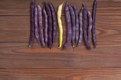 Purpurrote Stangenbohnen auf einem hölzernen Hintergrund Stockbilder
