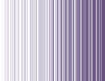 Purpurrote Streifen Lizenzfreies Stockbild