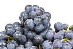 Purpurrote Trauben getrennt auf Weiß Lizenzfreie Stockfotos