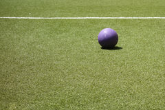 Purpurroter Ball Stockbild