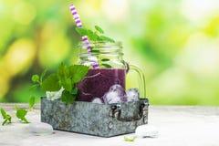 Purpurroter Beere Smoothie, rohe Lebensmitteldiät Stockbilder