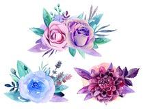 Purpurroter Blumenstraußvektor Lizenzfreie Stockbilder