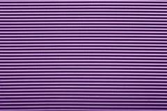 Purpurroter Hintergrund Stockbilder