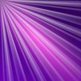 Purpurroter Hintergrund mit Strahlen Stockfotos
