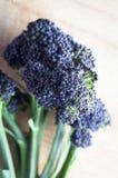 Purpurroter Keimungs-Brokkoli-Stiel auf Holz stockfotos