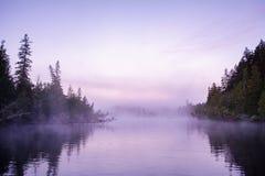 Purpurroter Morgen Stockbilder