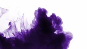 Purpurroter Rauchverbreitungshintergrund stock video