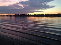 Purpurroter Sommersonnenaufgang auf dem Fluss Stockfoto