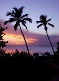 Purpurroter Sonnenuntergang stockfotografie