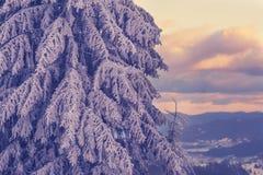 Purpurroter Sonnenuntergang in den Bergen nach Blizzard Stockbild