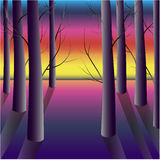 Purpurroter Wald bei Sonnenuntergang Lizenzfreie Stockfotografie