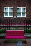Purpurrotes banch und weiße Fenster Lizenzfreies Stockfoto