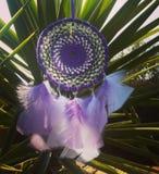 Purpurrotes dreamcatcher Stockfoto