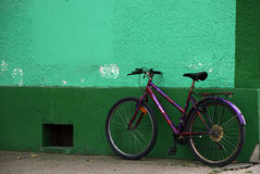 Purpurrotes Fahrrad nahe grüner Wand Lizenzfreies Stockbild