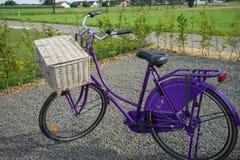 Purpurrotes Holländer Omafiets-Fahrrad Lizenzfreie Stockfotografie