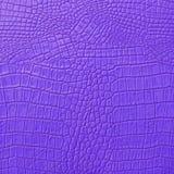 Purpurrotes Leder Stockfotografie
