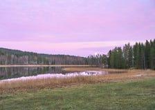 Purpurrotes Moonset stockbild