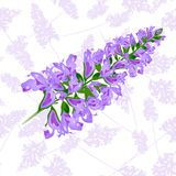 Purpurrotes nahtloses mit Blumenmuster Weich und liebevoll vektor abbildung