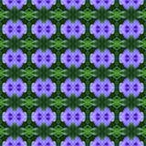 Purpurrotes Ruellia-tuberosa Linn in voller Blüte nahtlos stock abbildung