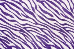 Purpurrotes und weißes Zebramuster Lizenzfreie Stockfotos