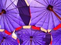 purpurt paraply Arkivfoto
