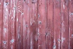 purpurt trä för härligt staket Royaltyfri Fotografi