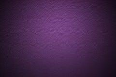 purpury Fotografia Stock