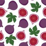 Purpury figi owoc z zielenią opuszcza słodkiego lato wzór na whi Zdjęcia Stock