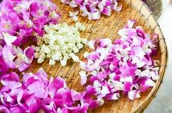Purpury orchidea na tradycyjnym koszu Obrazy Stock