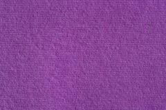 Purpury papierowa tekstura na makro- Obraz Royalty Free