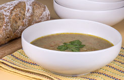 Purred vegetable soup Royalty Free Stock Photo