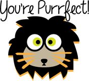 Purrfect Lion Royalty Free Stock Images