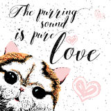 The purring sound is pure love, greeting card and motivational quote for pet lovers with typographic design. Royalty Free Stock Image