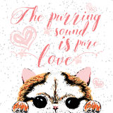 The purring sound is pure love, hand drawn card, lettering calligraphy motivational quote for cat lovers and typographic design. Royalty Free Stock Images