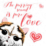 The purring sound is pure love, hand drawn card, lettering calligraphy motivational quote for cat lovers and typographic design. Royalty Free Stock Image