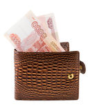 Purse. The brown purse is photographed on the close-up Royalty Free Stock Photos