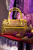 Purse. Golden purse and shoes set for Christmas Royalty Free Stock Photography
