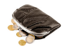 Purse with coins Stock Photos
