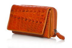 Purse in crocodile leather Stock Images