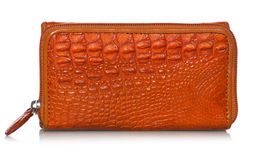 Purse in crocodile leather Royalty Free Stock Photography