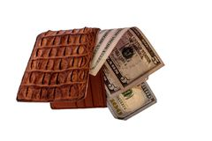Purse of crocodile leather brown money money dolar currency on isolated on white background Stock Image