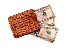 Purse of crocodile leather brown money money dolar currency on isolated on white background Stock Photos