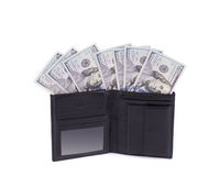 Purse with dollar bills. Stock Photography