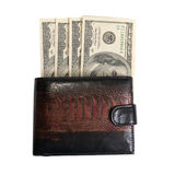 Purse with dollars Stock Images