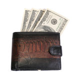 Purse with dollars Royalty Free Stock Photography